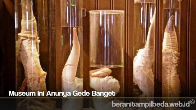 Museum Ini Anunya Gede Banget